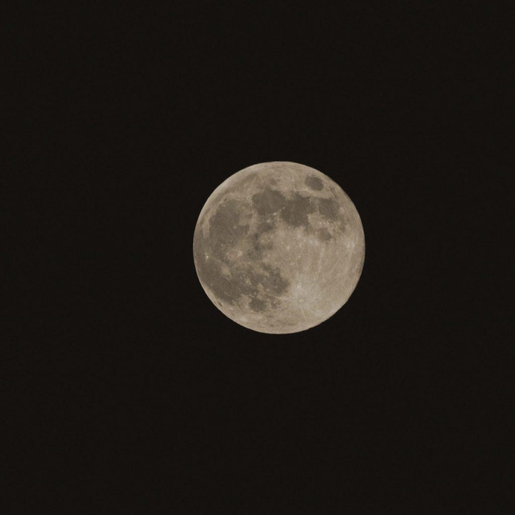 Photo de la Lune fleurie (Flower Moon)