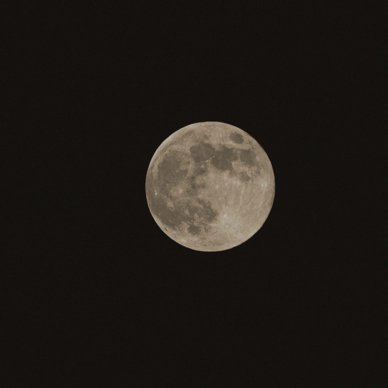 Lune fleurie